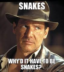 http://www.titantalk.com/forums/attachments/off-topic-discussion/155386d1360268363-dead-snake-found-ft-myers-water-plant-indiana-jones-snakes.jpg